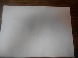 "Calf Velum 12"" by 16""  (30.5 cm by 40.6cm)"
